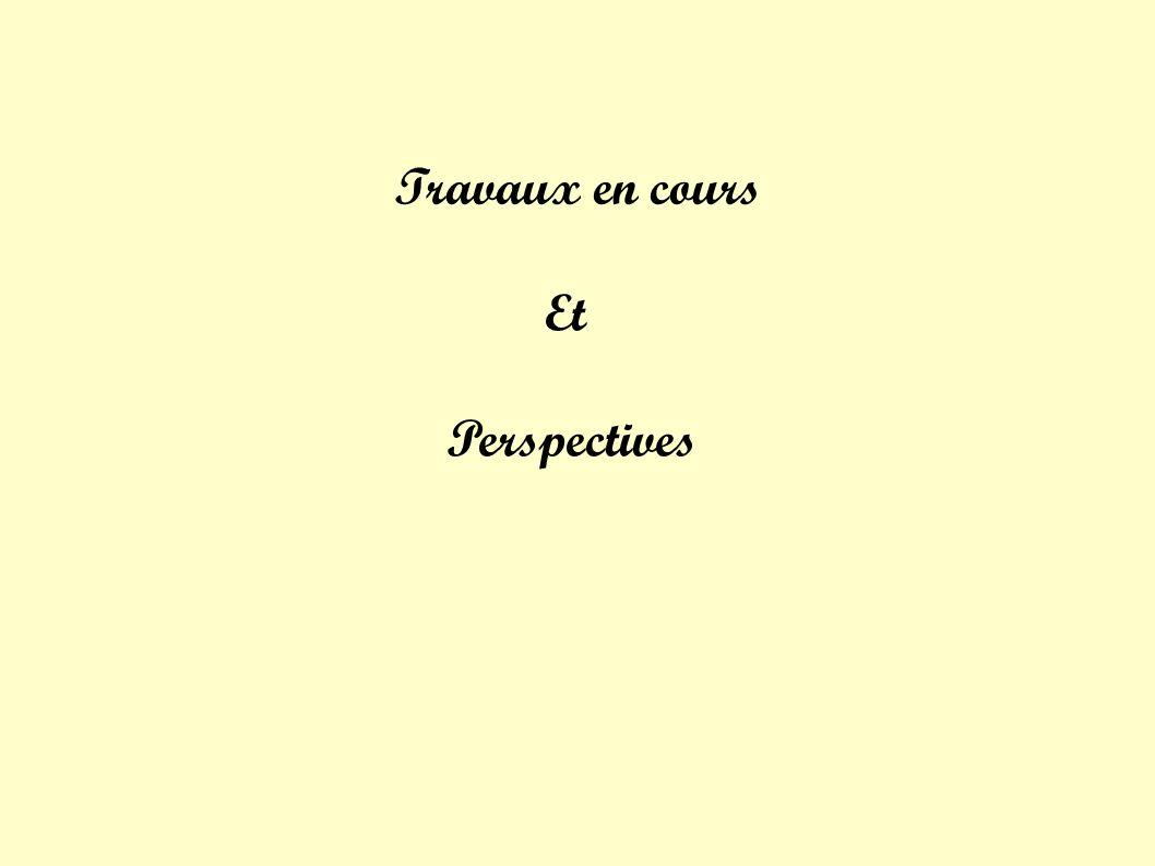 Travaux en cours Et Perspectives