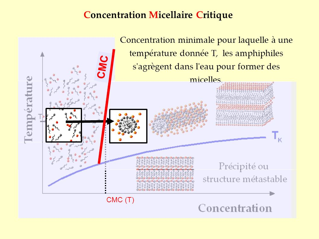 Concentration Micellaire Critique T Concentration minimale pour laquelle à une température donnée T, les amphiphiles s'agrègent dans l'eau pour former