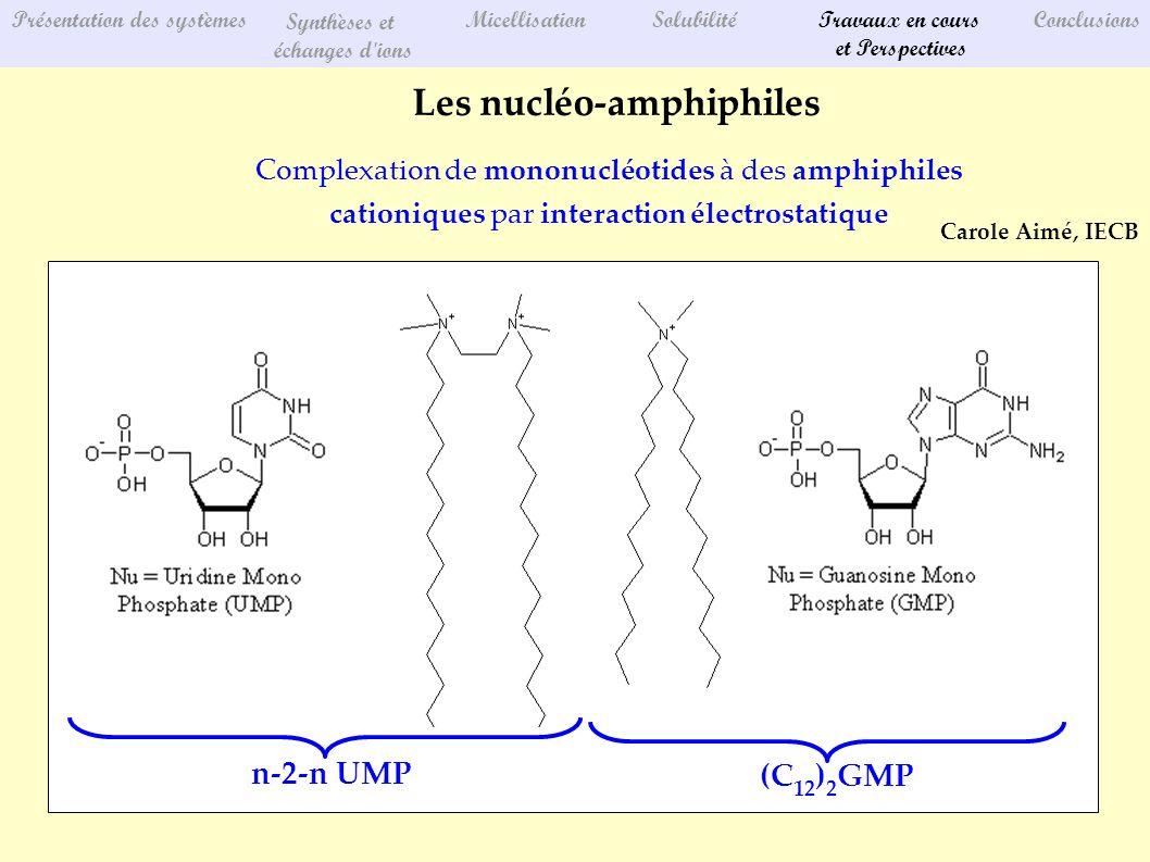 Les nucléo-amphiphiles Complexation de mononucléotides à des amphiphiles cationiques par interaction électrostatique Présentation des systèmes Synthèses et échanges d ions MicellisationSolubilitéTravaux en cours et Perspectives Conclusions Carole Aimé, IECB (C 12 ) 2 GMP n-2-n UMP