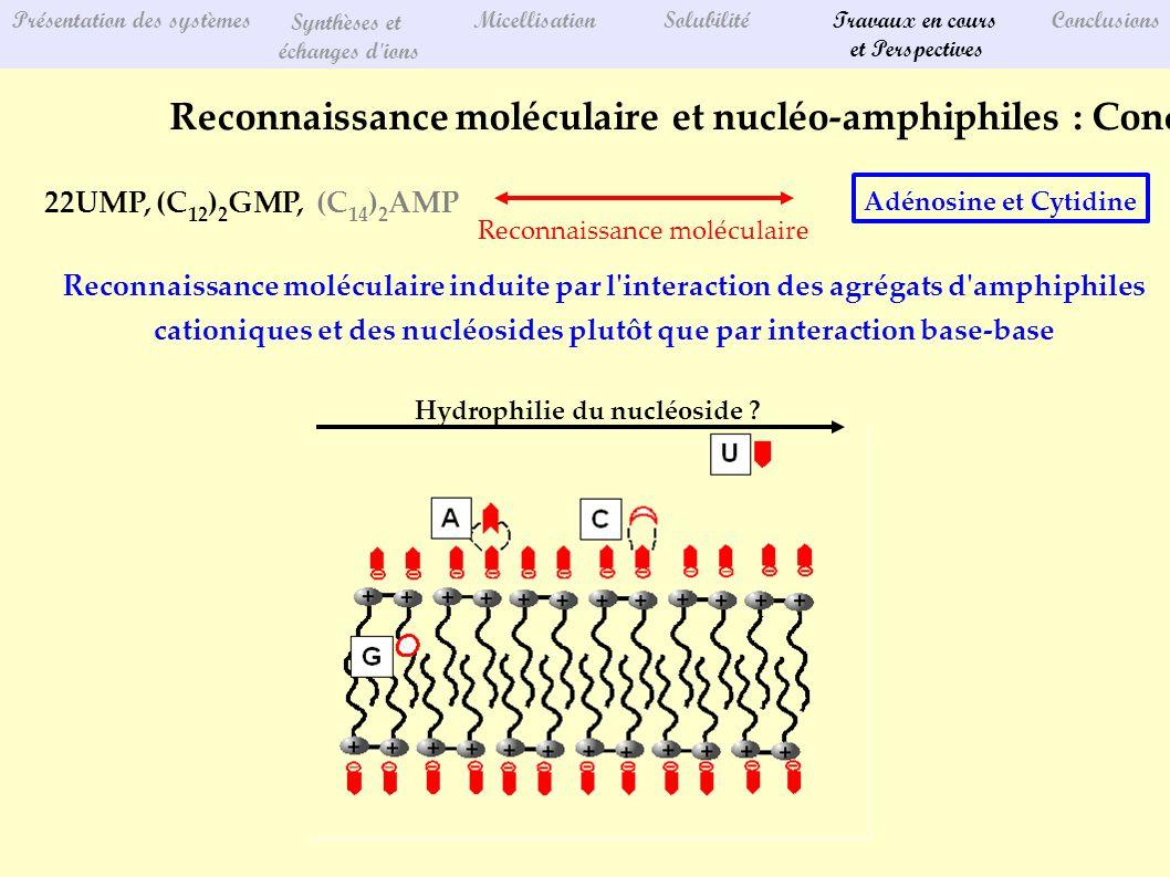 Présentation des systèmes Synthèses et échanges d'ions MicellisationSolubilitéTravaux en cours et Perspectives Conclusions Reconnaissance moléculaire