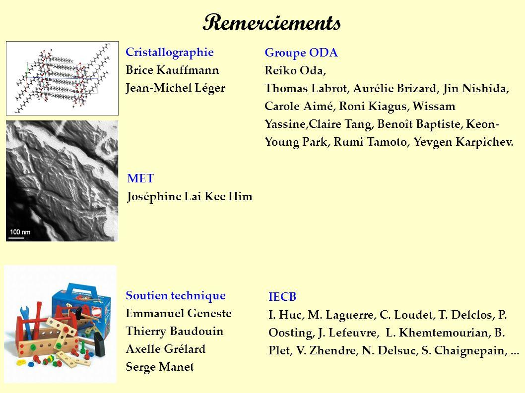 Remerciements Cristallographie Brice Kauffmann Jean-Michel Léger MET Joséphine Lai Kee Him Soutien technique Emmanuel Geneste Thierry Baudouin Axelle