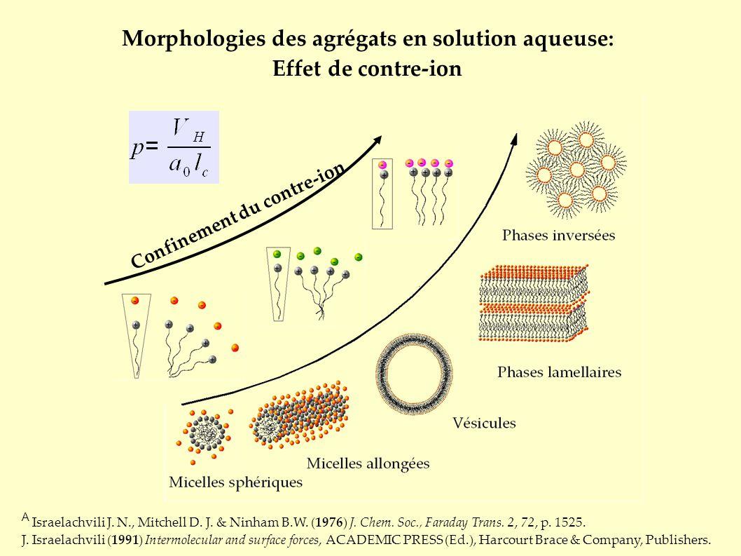 Morphologies des agrégats en solution aqueuse: Effet de contre-ion A Israelachvili J. N., Mitchell D. J. & Ninham B.W. (1976) J. Chem. Soc., Faraday T