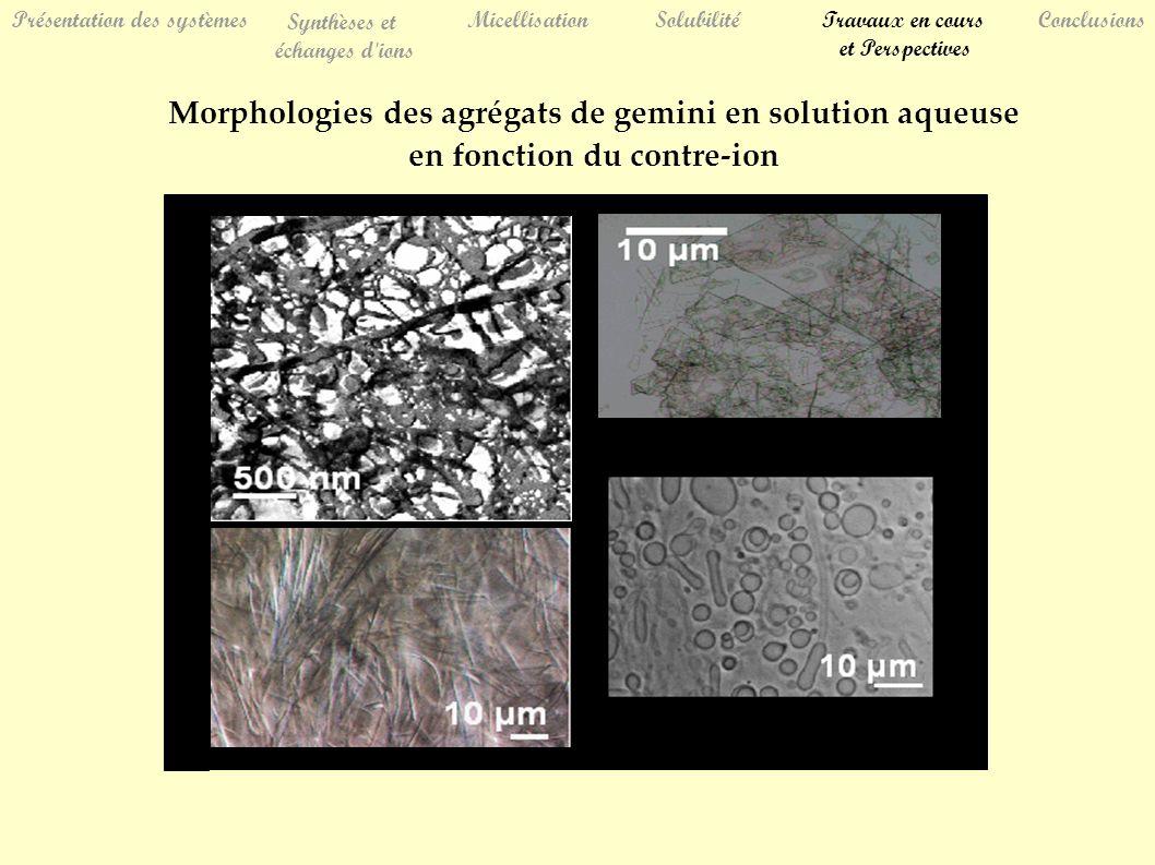 Présentation des systèmes Synthèses et échanges d ions MicellisationSolubilitéTravaux en cours et Perspectives Conclusions Morphologies des agrégats de gemini en solution aqueuse en fonction du contre-ion