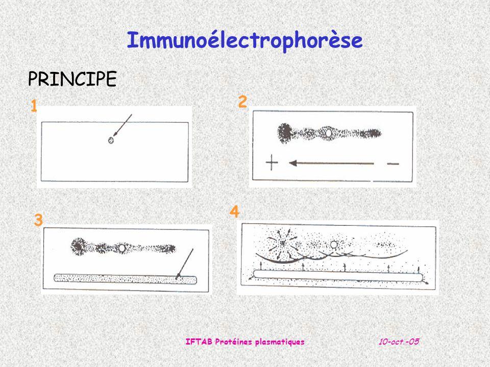 10-oct.-05IFTAB Protéines plasmatiques 1 2 3 4 Immunoélectrophorèse PRINCIPE