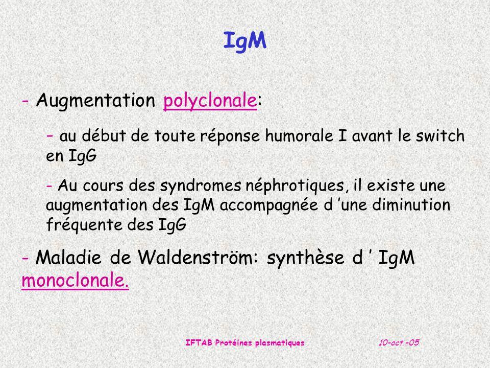 10-oct.-05IFTAB Protéines plasmatiques - Augmentation polyclonale: - au début de toute réponse humorale I avant le switch en IgG - Au cours des syndro