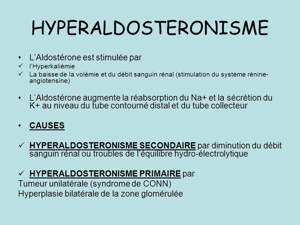 HYPERALDOSTERONISME LAldostérone est stimulée par lHyperkaliémie La baisse de la volémie et du débit sanguin rénal (stimulation du système rénine- angiotensine) LAldostérone augmente la réabsorption du Na+ et la sécrétion du K+ au niveau du tube contourné distal et du tube collecteur CAUSES HYPERALDOSTERONISME SECONDAIRE par diminution du débit sanguin rénal ou troubles de léquilibre hydro-électrolytique HYPERALDOSTERONISME PRIMAIRE par Tumeur unilatérale (syndrome de CONN) Hyperplasie bilatérale de la zone glomérulée
