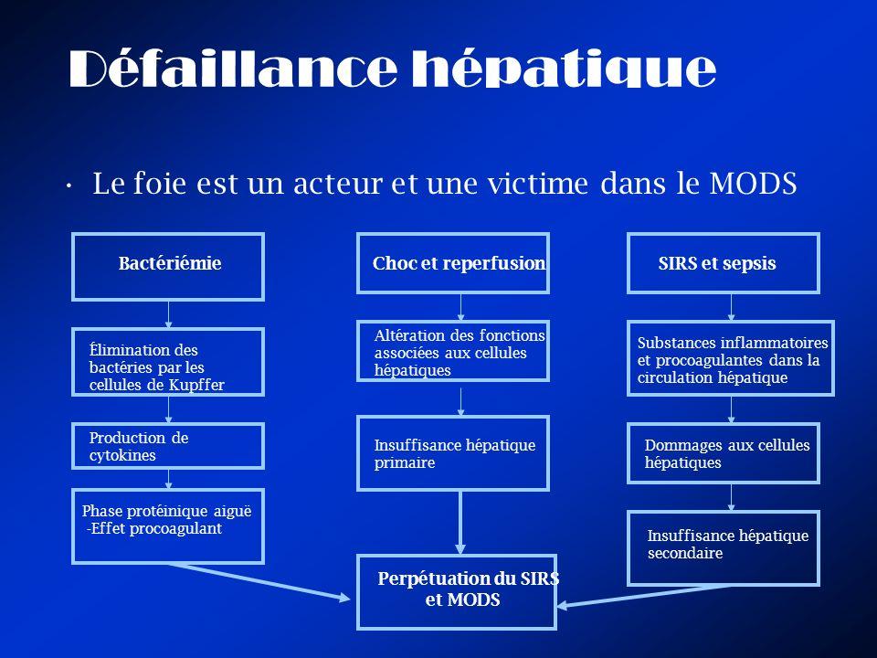Défaillance hépatique Le foie est un acteur et une victime dans le MODS BactériémieChoc et reperfusionSIRS et sepsis Élimination des bactéries par les