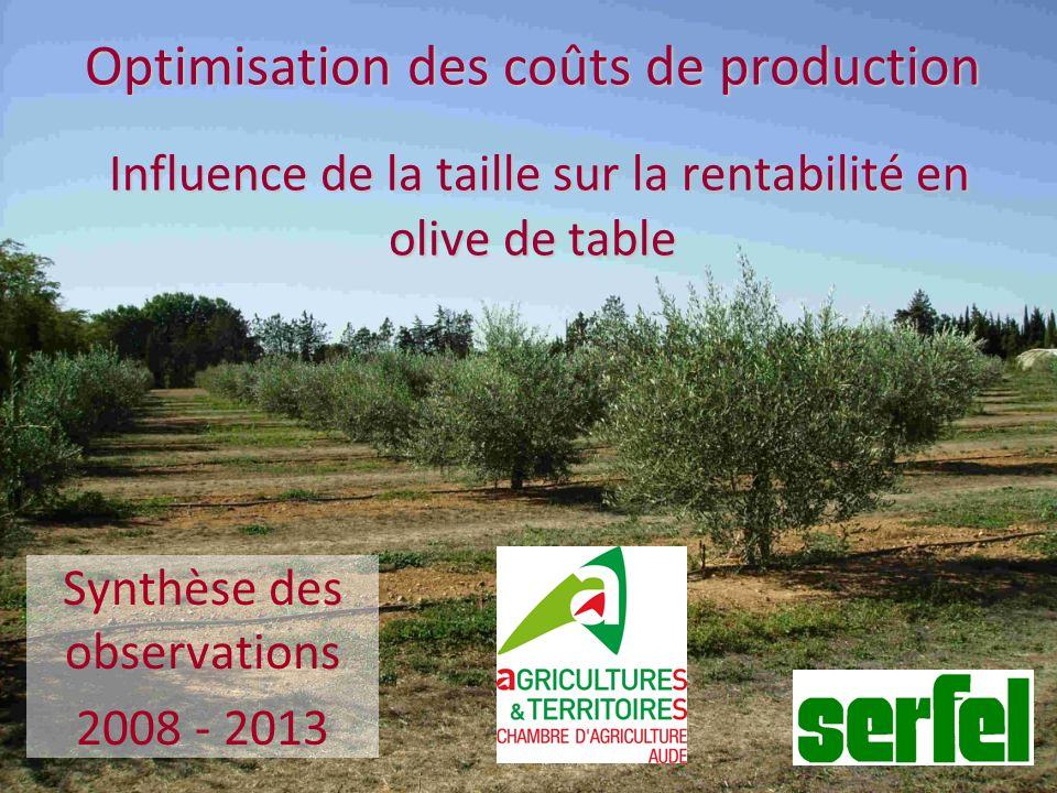 Optimisation des coûts de production Influence de la taille sur la rentabilité en olive de table Synthèse des observations 2008 - 2013