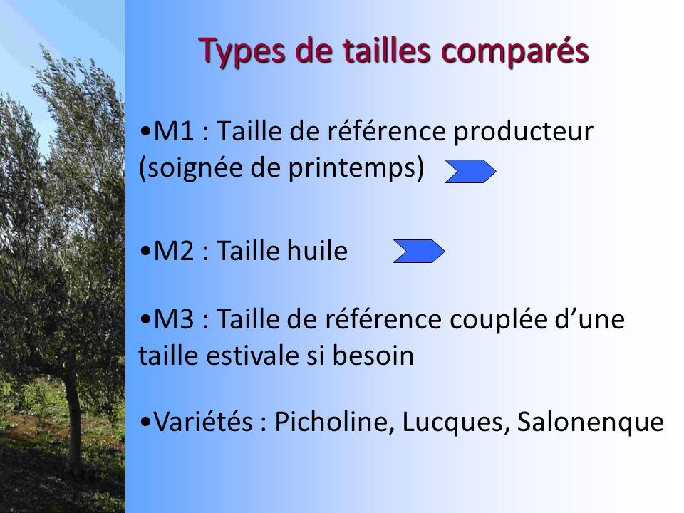 M1 : Taille de référence producteur (soignée de printemps) Types de tailles comparés M2 : Taille huile M3 : Taille de référence couplée dune taille es