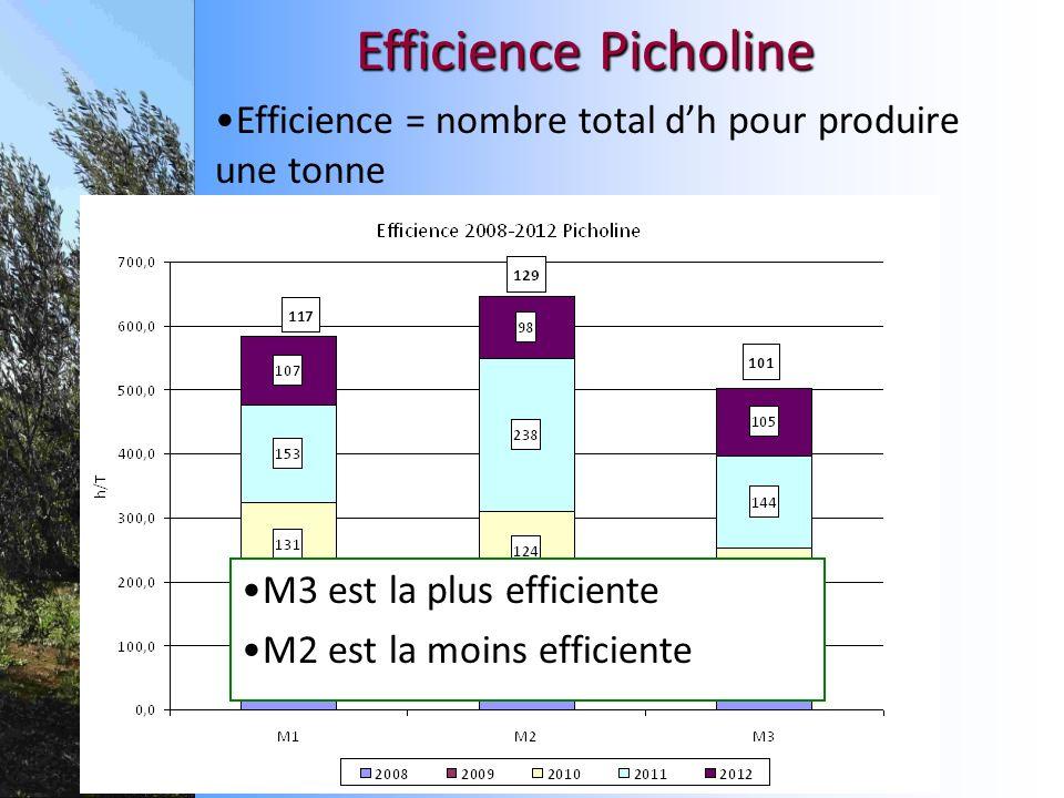 Efficience Picholine Efficience = nombre total dh pour produire une tonne M3 est la plus efficiente M2 est la moins efficiente