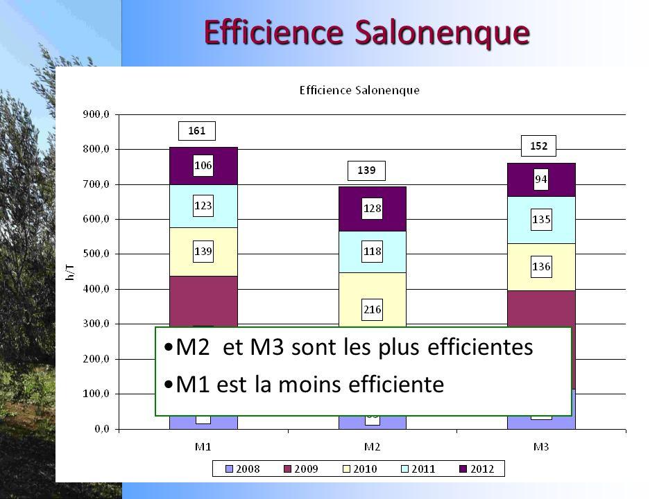 Efficience Salonenque M2 et M3 sont les plus efficientes M1 est la moins efficiente