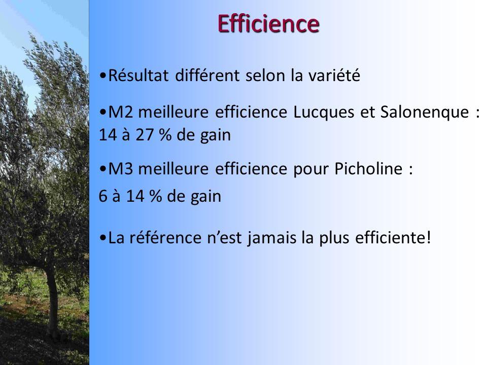 Efficience Résultat différent selon la variété M3 meilleure efficience pour Picholine : 6 à 14 % de gain M2 meilleure efficience Lucques et Salonenque