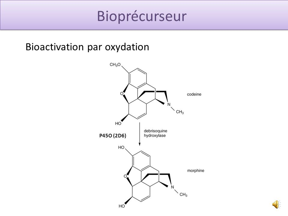 Bioactivation par oxydation P45O (2D6)