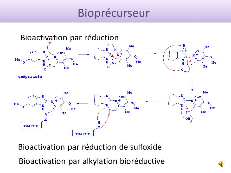 Bioactivation par réduction Bioprécurseur Bioactivation par réduction de sulfoxide Bioactivation par alkylation bioréductive