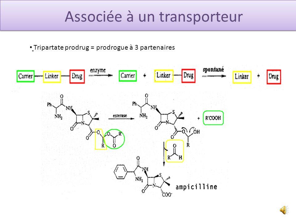 Associée à un transporteur Liaison covalente Synthèse Synthèse chimique chimique GROUPEMENT GROUPEMENT GROUPEMENT GROUPEMENT DROGUE + TRANSPORTEUR DRO