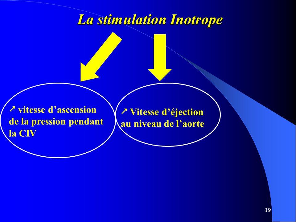 19 La stimulation Inotrope La stimulation Inotrope vitesse dascension de la pression pendant la CIV Vitesse déjection au niveau de laorte