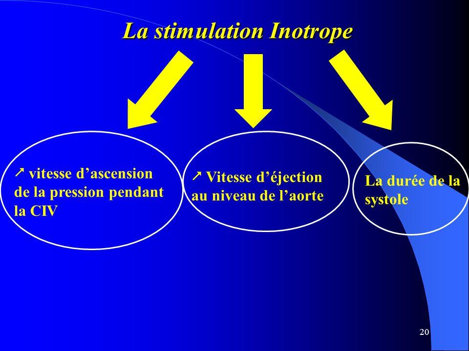 20 La stimulation Inotrope La stimulation Inotrope vitesse dascension de la pression pendant la CIV Vitesse déjection au niveau de laorte La durée de