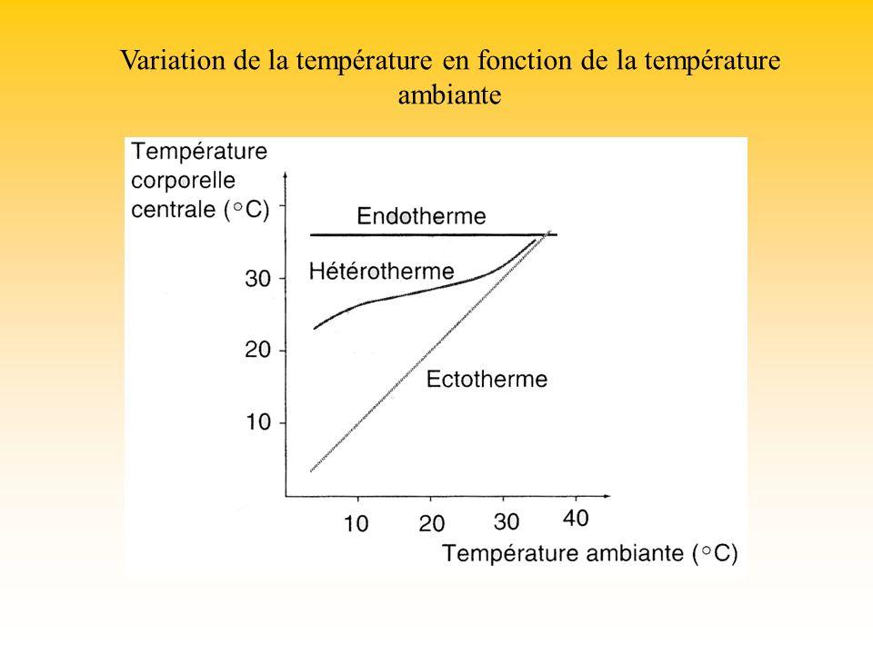 Variation de la température en fonction de la température ambiante