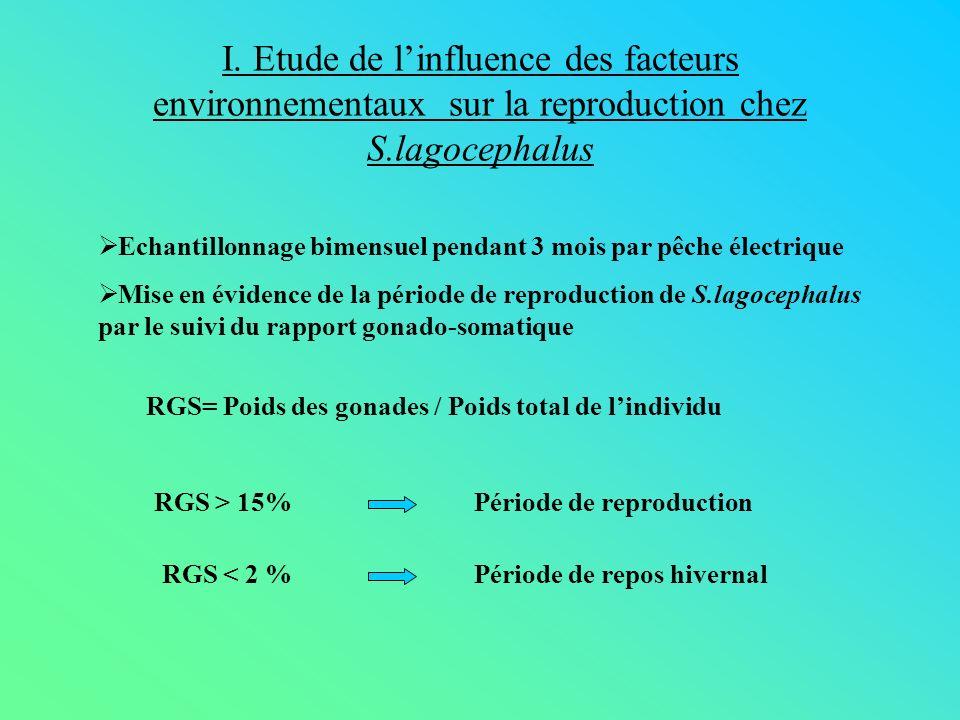 I. Etude de linfluence des facteurs environnementaux sur la reproduction chez S.lagocephalus Echantillonnage bimensuel pendant 3 mois par pêche électr