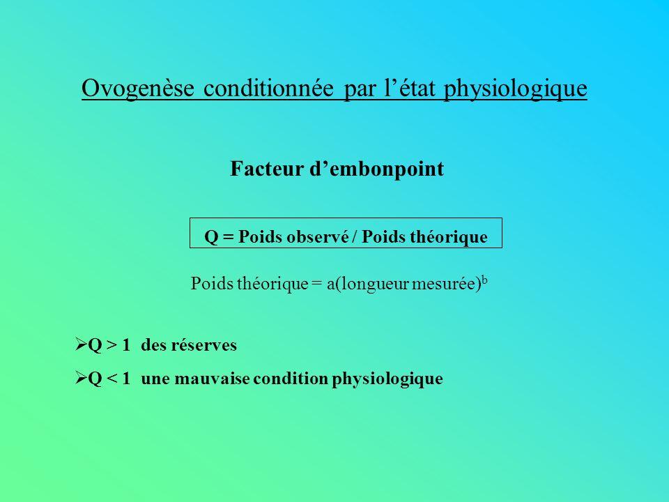 Ovogenèse conditionnée par létat physiologique Q = Poids observé / Poids théorique Poids théorique = a(longueur mesurée) b Q > 1 des réserves Q < 1 un