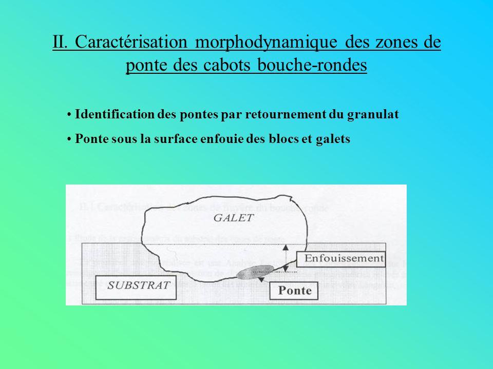 II. Caractérisation morphodynamique des zones de ponte des cabots bouche-rondes Identification des pontes par retournement du granulat Ponte sous la s