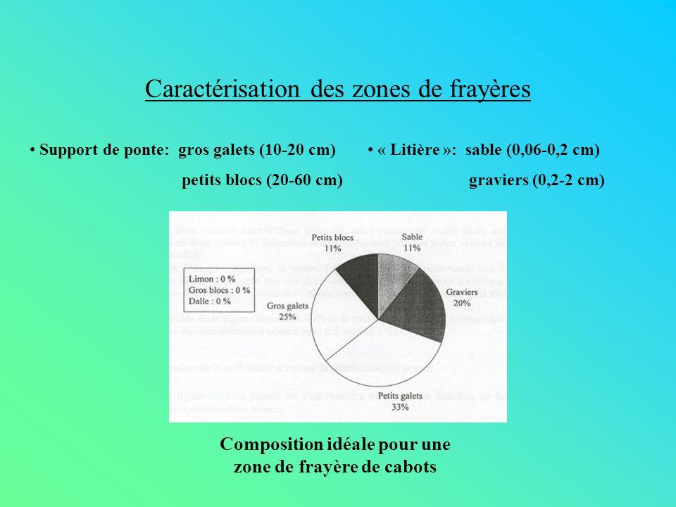 Caractérisation des zones de frayères Support de ponte: gros galets (10-20 cm) petits blocs (20-60 cm) « Litière »: sable (0,06-0,2 cm) graviers (0,2-