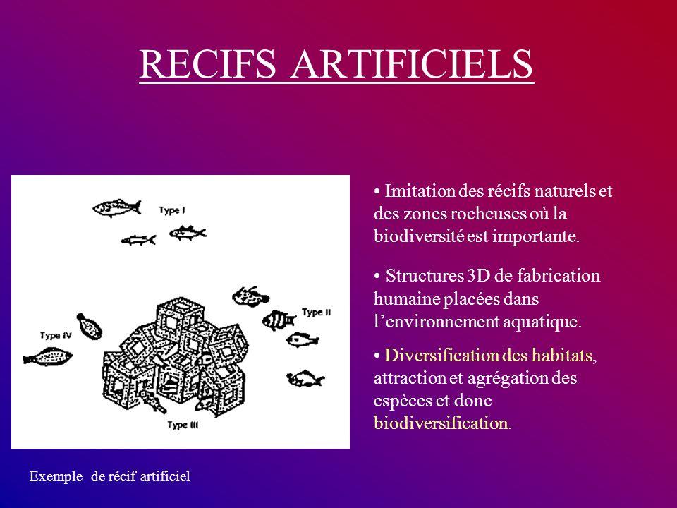 RECIFS ARTIFICIELS Imitation des récifs naturels et des zones rocheuses où la biodiversité est importante. Structures 3D de fabrication humaine placée
