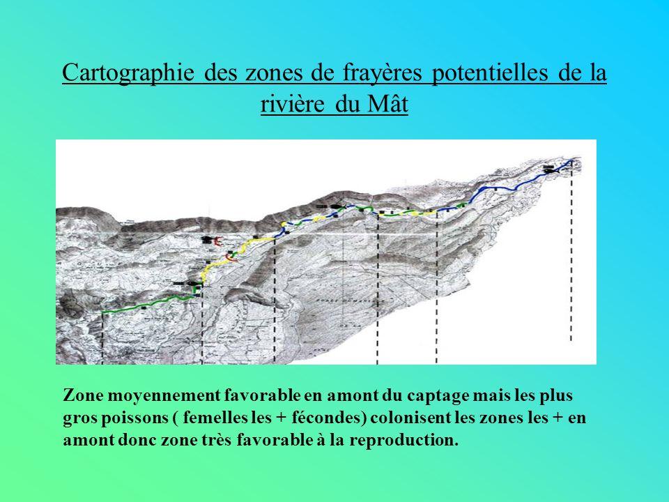 Cartographie des zones de frayères potentielles de la rivière du Mât Zone moyennement favorable en amont du captage mais les plus gros poissons ( feme