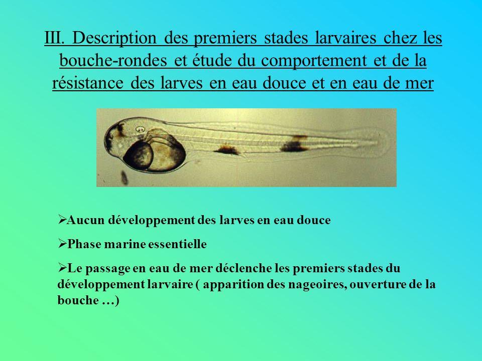 III. Description des premiers stades larvaires chez les bouche-rondes et étude du comportement et de la résistance des larves en eau douce et en eau d