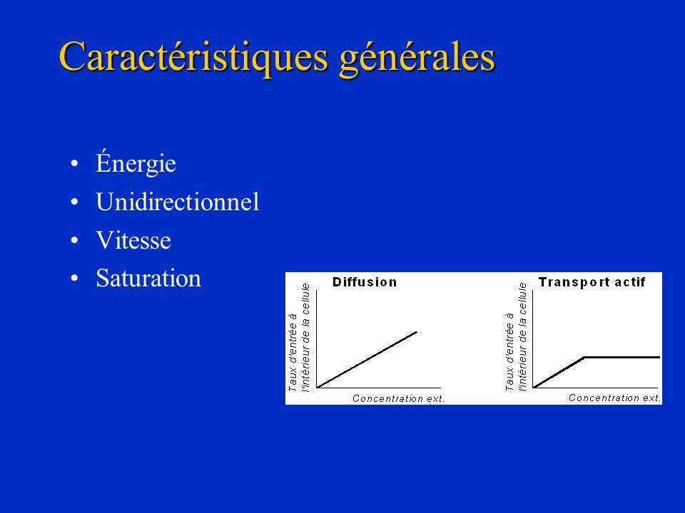 Énergie Unidirectionnel Vitesse Saturation Caractéristiques générales