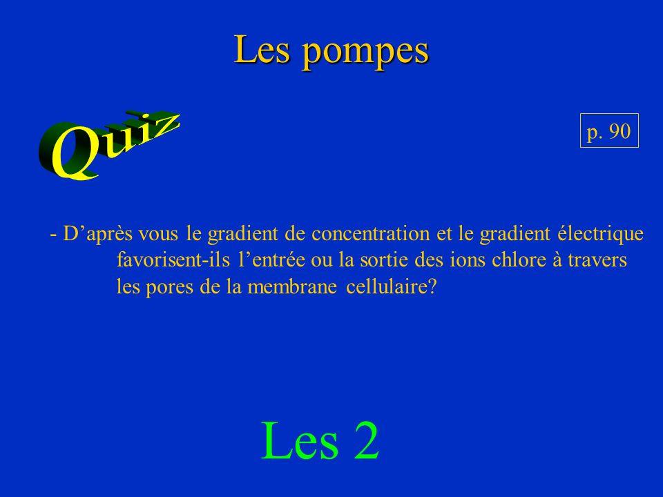 Les pompes p. 90 - Daprès vous le gradient de concentration et le gradient électrique favorisent-ils lentrée ou la sortie des ions chlore à travers le