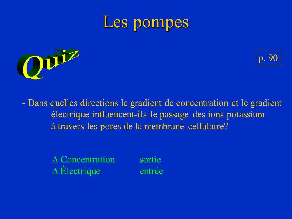 Les pompes p. 90 - Dans quelles directions le gradient de concentration et le gradient électrique influencent-ils le passage des ions potassium à trav