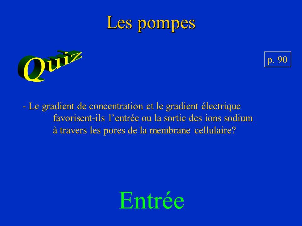 Les pompes - Le gradient de concentration et le gradient électrique favorisent-ils lentrée ou la sortie des ions sodium à travers les pores de la memb