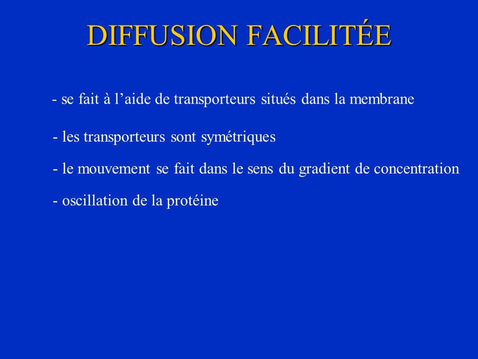 DIFFUSION FACILITÉE - se fait à laide de transporteurs situés dans la membrane - les transporteurs sont symétriques - oscillation de la protéine - le