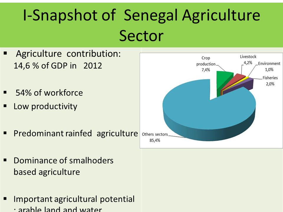 Agriculture contribution: 14,6 % of GDP in 2012 54% of workforce Low productivity Predominant rainfed agriculture Dominance of smalhoders based agriculture Important agricultural potential : arable land and water resources I-Snapshot of Senegal Agriculture Sector