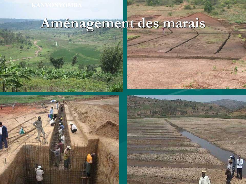 KANYONYOMBA Aménagement des marais