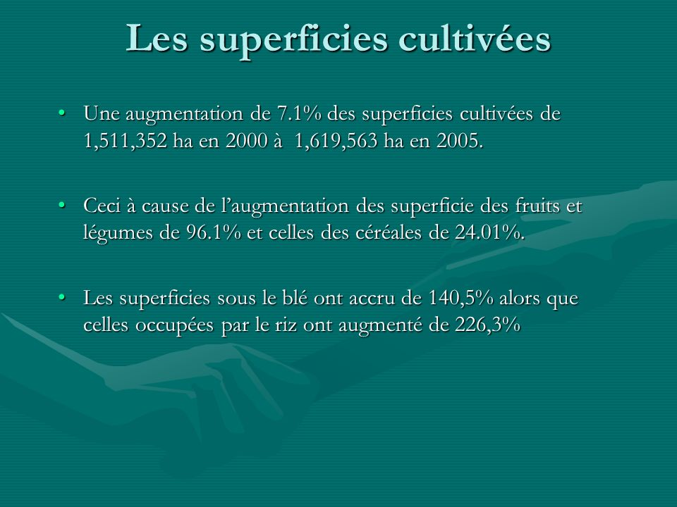Les superficies cultivées Une augmentation de 7.1% des superficies cultivées de 1,511,352 ha en 2000 à 1,619,563 ha en 2005.Une augmentation de 7.1% des superficies cultivées de 1,511,352 ha en 2000 à 1,619,563 ha en 2005.