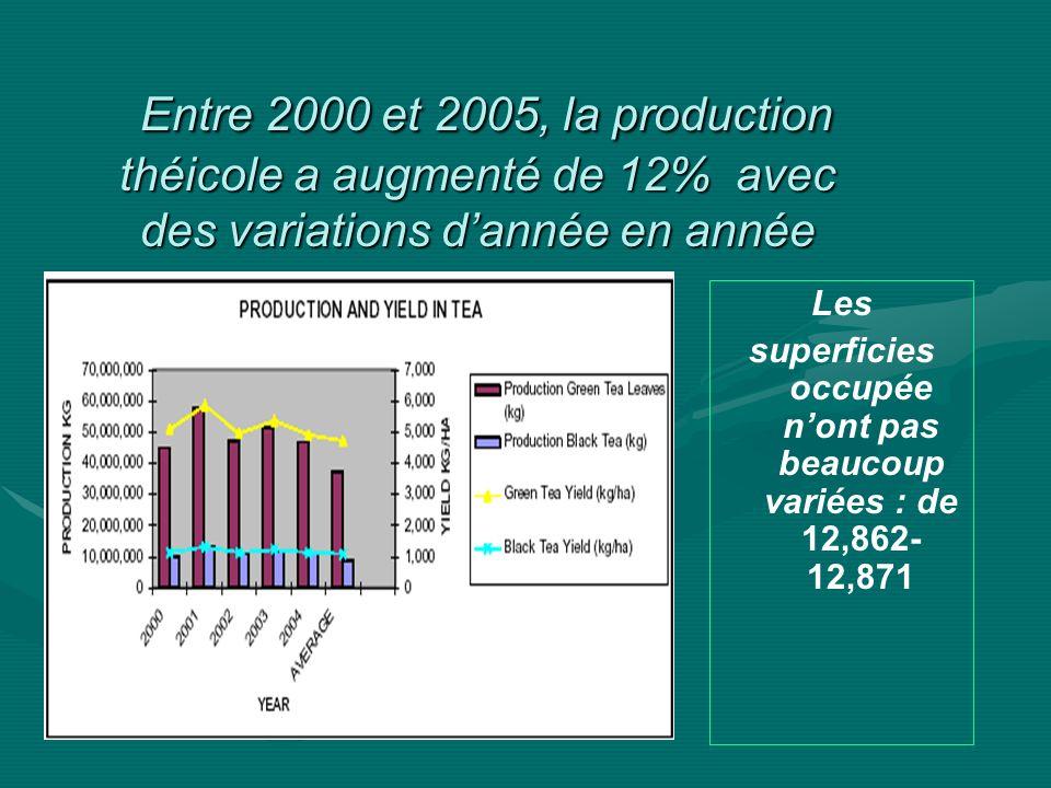Entre 2000 et 2005, la production théicole a augmenté de 12% avec des variations dannée en année Entre 2000 et 2005, la production théicole a augmenté de 12% avec des variations dannée en année Les superficies occupée nont pas beaucoup variées : de 12,862- 12,871