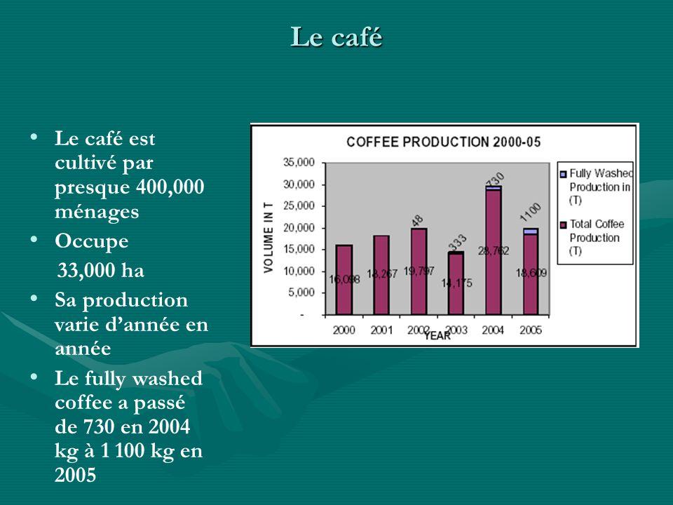 Le café Le café est cultivé par presque 400,000 ménages Occupe 33,000 ha Sa production varie dannée en année Le fully washed coffee a passé de 730 en 2004 kg à 1 100 kg en 2005