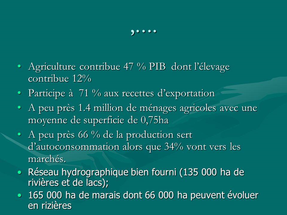 Horticulture Le volume des fleurs, fruits et légumes exporté a augmenté de 112MT en 2002 à 3066MT en 2005Le volume des fleurs, fruits et légumes exporté a augmenté de 112MT en 2002 à 3066MT en 2005 Avec des exportations par semaine de 59MTAvec des exportations par semaine de 59MT