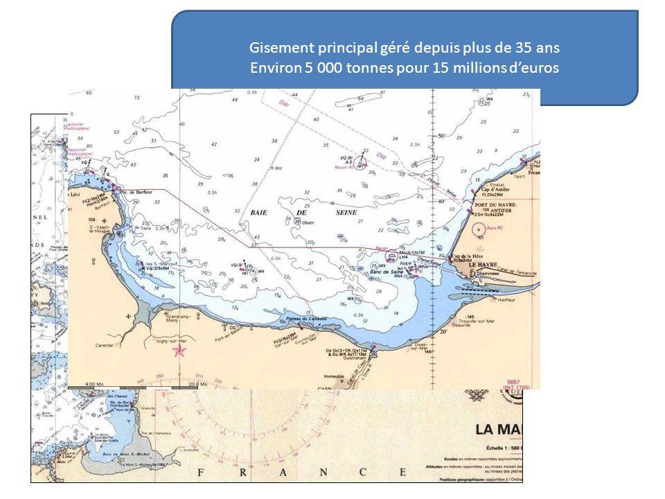 Effectif de la flottille Nombre de navires limité à 150 en Baie de Seine En 2010 : - 117 navires chalutiers dragueurs -Plus de la moitié des navires mesure moins de 14 m - La taille moyenne est de 13 mètres