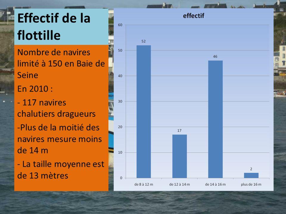 Effectif de la flottille Nombre de navires limité à 150 en Baie de Seine En 2010 : - 117 navires chalutiers dragueurs -Plus de la moitié des navires m