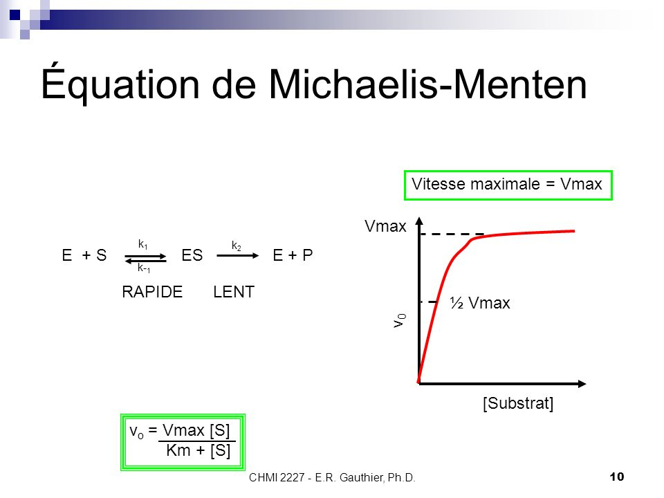 CHMI 2227 - E.R. Gauthier, Ph.D.10 Équation de Michaelis-Menten [Substrat] v0v0 Vitesse maximale = Vmax Vmax ½ Vmax E + S ES E + P k2k2 k1k1 k- 1 RAPI