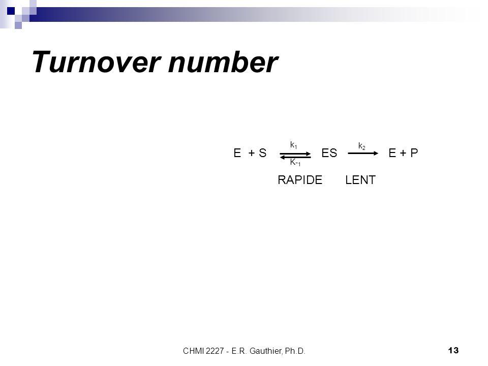 CHMI 2227 - E.R. Gauthier, Ph.D.13 Turnover number E + S ES E + P k2k2 k1k1 K- 1 RAPIDELENT