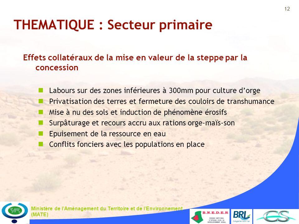 12 Ministère de lAménagement du Territoire et de lEnvironnement (MATE) THEMATIQUE : Secteur primaire Effets collatéraux de la mise en valeur de la ste