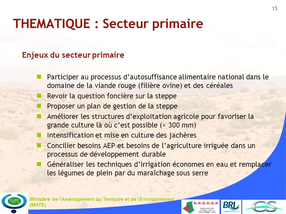 13 Ministère de lAménagement du Territoire et de lEnvironnement (MATE) THEMATIQUE : Secteur primaire Enjeux du secteur primaire Participer au processu