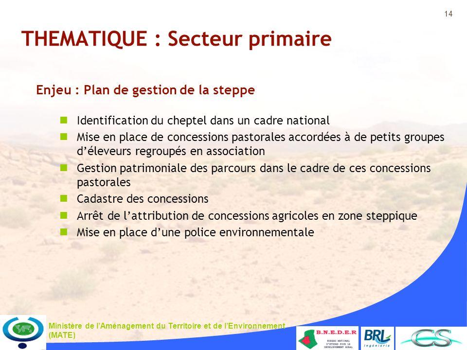 14 Ministère de lAménagement du Territoire et de lEnvironnement (MATE) THEMATIQUE : Secteur primaire Enjeu : Plan de gestion de la steppe Identificati