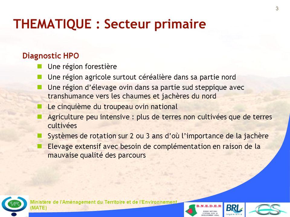 3 Ministère de lAménagement du Territoire et de lEnvironnement (MATE) THEMATIQUE : Secteur primaire Diagnostic HPO Une région forestière Une région ag