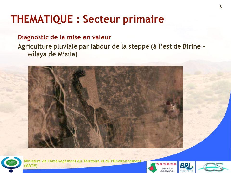 8 Ministère de lAménagement du Territoire et de lEnvironnement (MATE) THEMATIQUE : Secteur primaire Diagnostic de la mise en valeur Agriculture pluviale par labour de la steppe (à lest de Birine – wilaya de Msila)