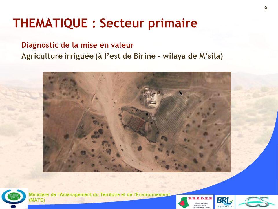 9 Ministère de lAménagement du Territoire et de lEnvironnement (MATE) THEMATIQUE : Secteur primaire Diagnostic de la mise en valeur Agriculture irriguée (à lest de Birine – wilaya de Msila)